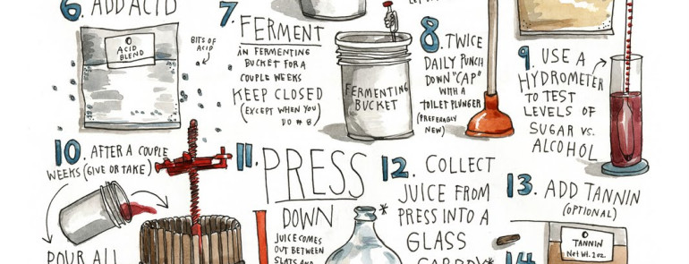 How to make wine in 22 steps infographic south calgary winekitz - Make good house wine tips vinter ...